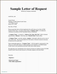 Request for Donations Letter Template Free - Examples Letters Requesting Donations Sample Fundraising Letter
