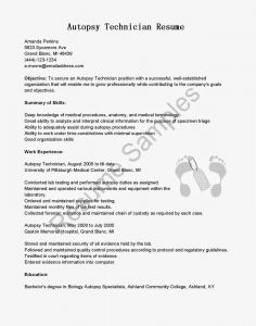 Resume Cover Letter Template Word - Fax Cover Letter Template Word Gallery