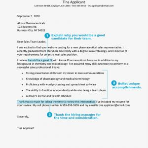 Sales Pitch Letter Template - Cover Letter Examples for Sales and Marketing Jobs