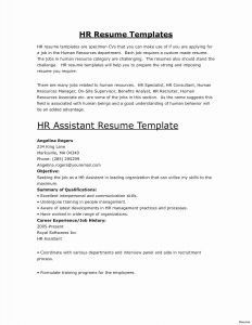 Self Employment Letter Template - How to Put to Her A Resume Beautiful Self Employed Resume New