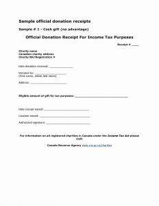Tax Deductible Donation Letter Template - Donation Receipt Letter Template Sample