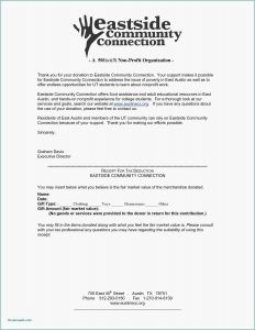 Template for Donation Request Letter - 29 Best Donation Request Letter format