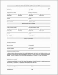 Temporary Guardianship Letter Template - 57 Fresh Gallery Child Custody Letter Template