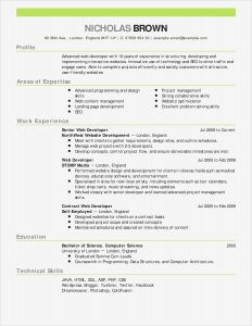 Vintage Letter Template - Resume Template – Cfo Resume Template Inspirational Actor Resumes 0d