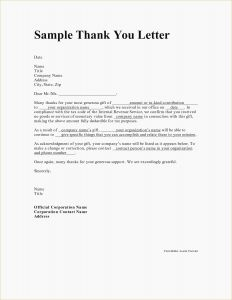 Volunteer Letter Of Appreciation Template - Thank You Letter for Volunteering