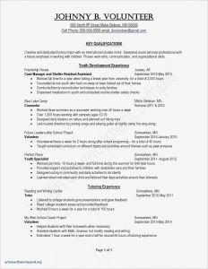 Volunteer Letter Template - Financial Advisor Resume Template Inspirational Job Fer Letter