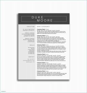 Word Doc Cover Letter Template - Word format Job Application Letter Cover Letter for Resume Examples