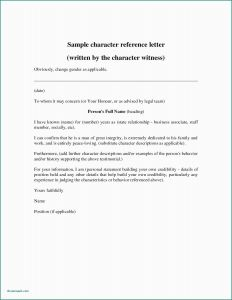 Writing Your Own Letter Of Recommendation Template - Letter Re Mendation Heading format Character Letters for Court